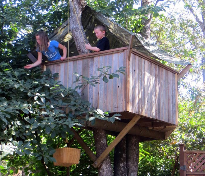 the classic tree house